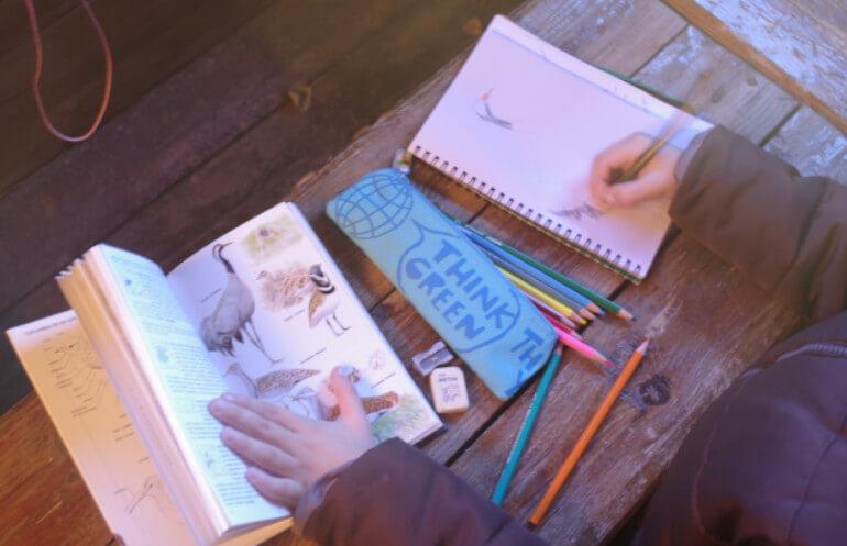Dibujando una grulla en la visita guiada para familias