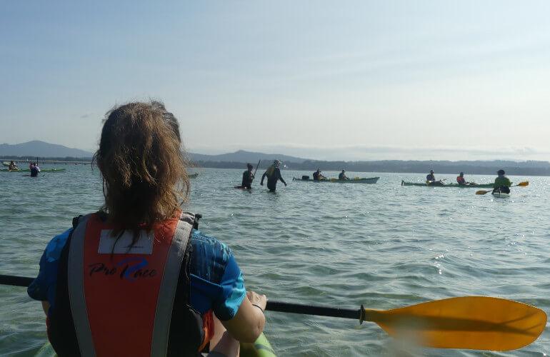 Canino en Kayak viendo marisquear en la ria de Arousa